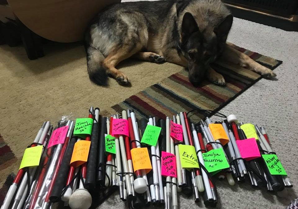 A german shepard laying next to a bundle of mobility canes with names attached to them